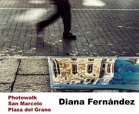 Diana-Fernandez-San-Marcelo
