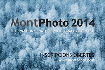 montphoto-contest