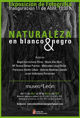 Naturaleza-en-blanco-y-negro