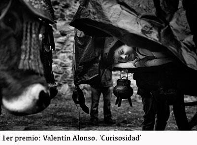 1-PREMIO-Valentinalonso-curiosidad-copia