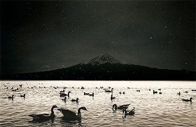 Maso-Yamamoto