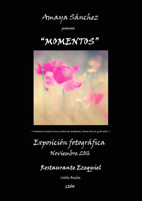 Momentos_Amaya